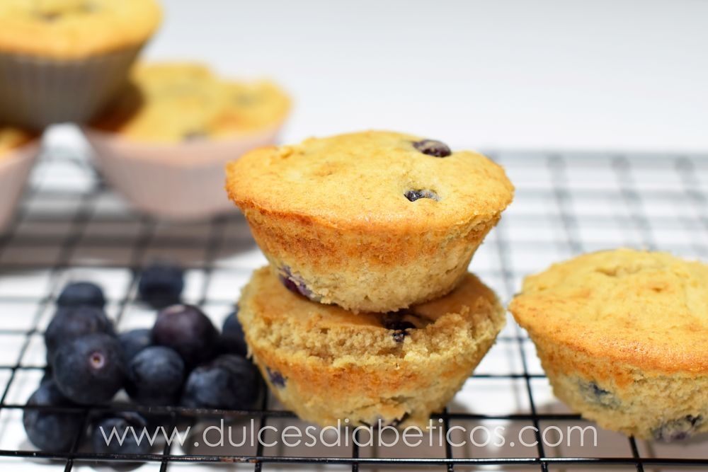 Muffins de arandanos sin azucar